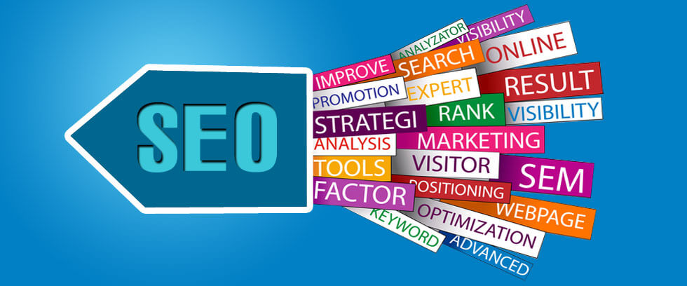 services-new-york-seo-ny-11365-seo-agency